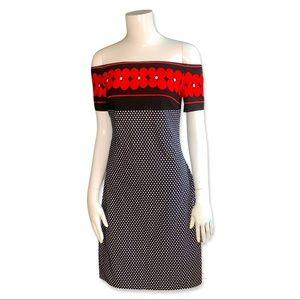 NWT Frank Lyman Floral & Polka Dot Dress